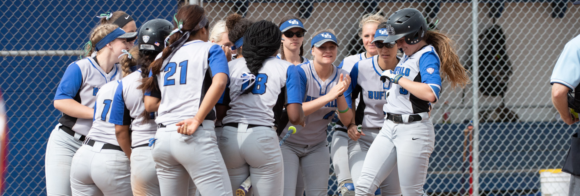 UB Softball